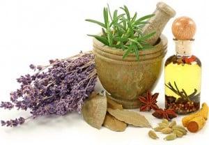 Лекарственные растения обладают не только противомикробной активностью, но и способствуют снятию воспаления, уменьшению отека и ускоряют заживление ран.
