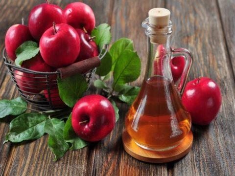 Яблочный уксус при варикозной болезни