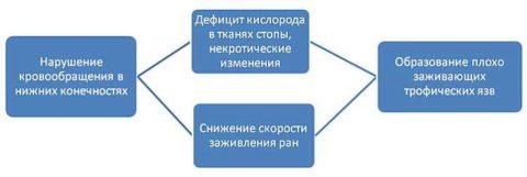 Как формируются трофические язвы при варикозе