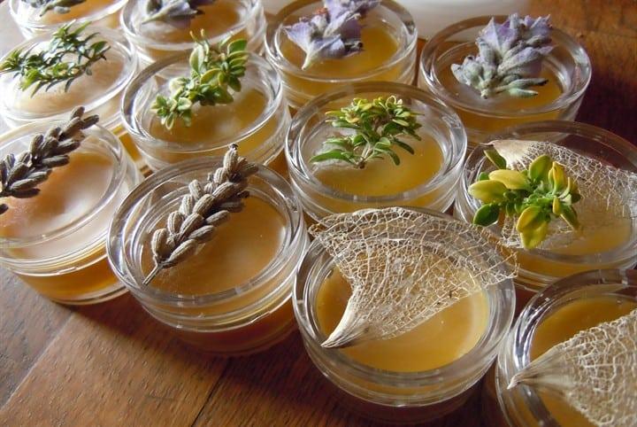Какие можно использовать травы от варикоза вен на ногах uFlebologa