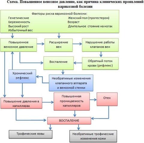 Механизм развития клинических проявлений при варикозе