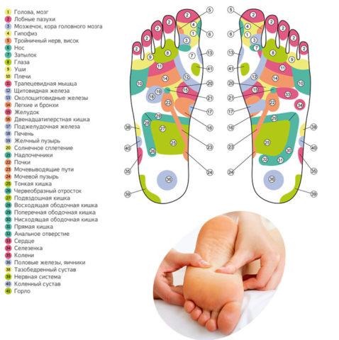Схема для массажа стопы