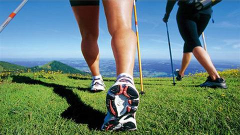 Скандинавская ходьба, все равно остается ходьбой, поэтому ее всегда влючают в список профилактических мер