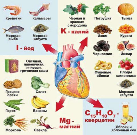 Миокард нуждается в регулярной витаминной поддержке