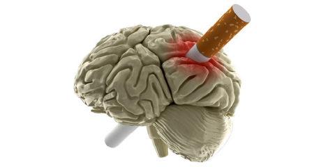 Сигареты приводят к снижению мозговой активности.