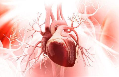 Меры профилактики как залог здоровья сердца.