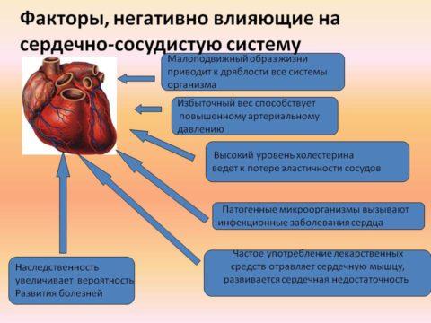 Негативные факторы, влияющие на сердце и сосуды