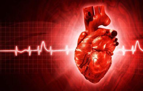 Порок сердца, в чем опасность?