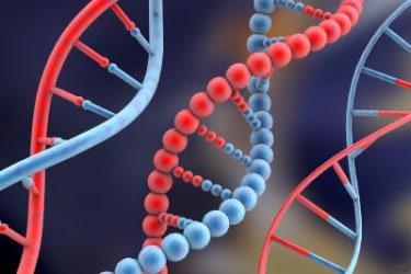 Предрасположенность к болезни передается с генами.