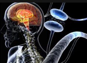 Формы причины появления болезни у пациентов.