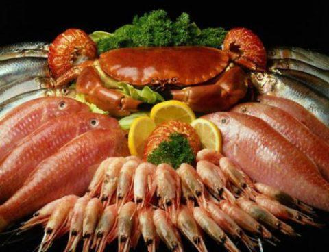 Морепродукты, представленные на фото, являются источником легкоусвояемого белка