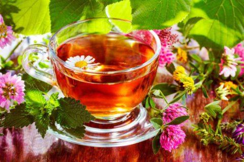 Мятный чай отлично успокаивает и улучшает деятельность ССС