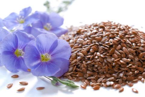 Наладить пищеварение, очистить сосуды и укрепить организм поможет льняное семя.