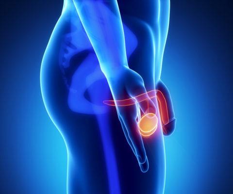 Наличие боли или дискомфорта в яичках - верный признак проблем со здоровьем