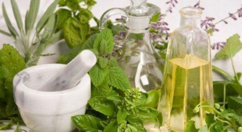 Народная медицина богата рецептами, используемыми для укрепления здоровья и очищения организма.