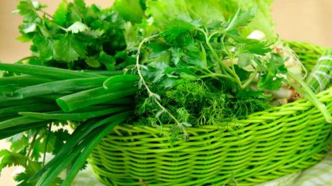 Пряная зелень поможет укрепить иммунитет и очистить организм от холестерина.