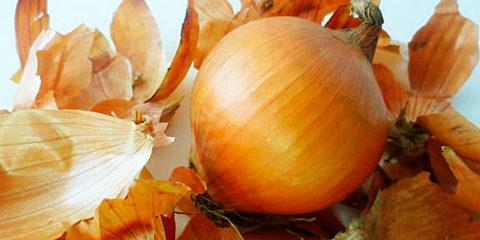 Удивительными полезными свойствами обладает не только лук, но и шелуха овоща.