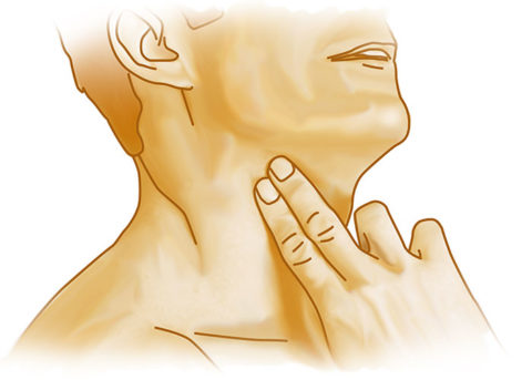 Вы легко можете нащупать пульсирующую сонную артерию, приложив два пальца к шее
