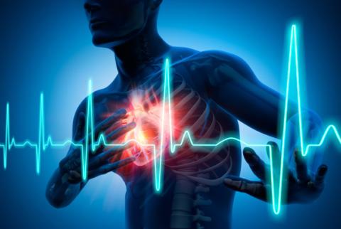 Большие дозы увеличивают сердцебиение