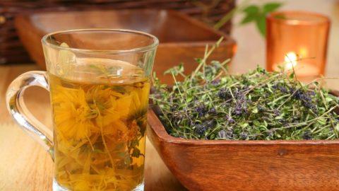 Домашние лекарства на основе растительного сырья являются самыми эффективными.