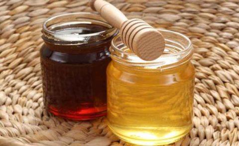 Гречишный (темный) и акациевый (светлый) мед – оба полезны для сердечно-сосудистой системы