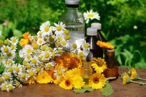 Избавиться от проблем со здоровьем поможет богатая кладезь народных рецептов.