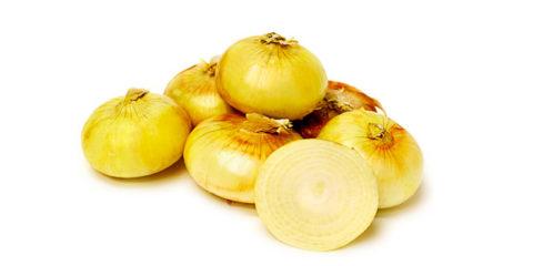 Луковицы сладкого репчатого лука