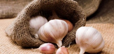Нерациональное и чрезмерное употребление овоща может причинить организму вред.