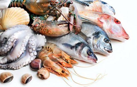 Пищевые дары моря