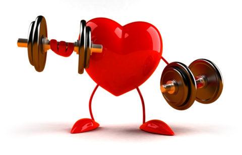 Почему сердцу нужны тренировки.