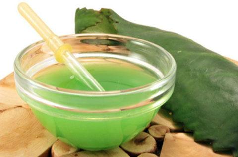 Правила подготовки сырья для добычи сока.