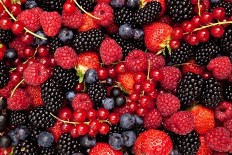Различные виды свежих ягод – кладезь полезных витаминов и микроэлементов.