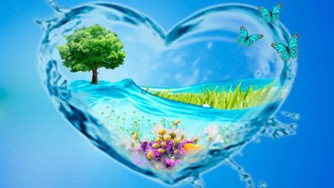 Укрепить сосуды и улучшить самочувствие помогут разнообразные водные процедуры.