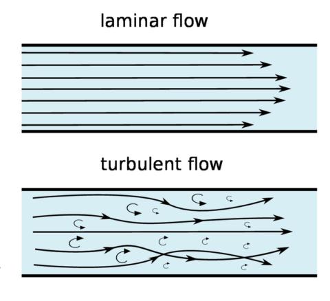 Ламинарный и турбулентный механизм движения крови по сосудам.