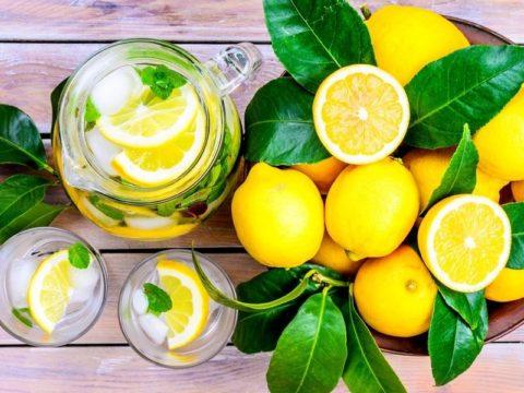 Полезными свойствами обладает даже обыкновенный чай с лимоном.