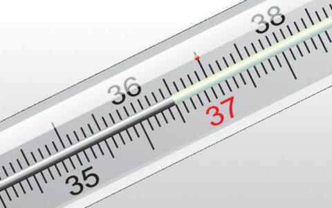 Температура мошонки не должна подыматься выше 35 градусов