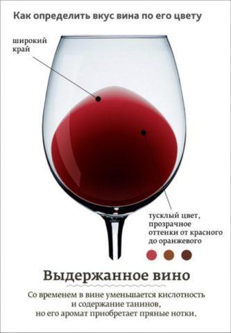 Чем больше танинов в вине, тем оно полезнее для сосудов