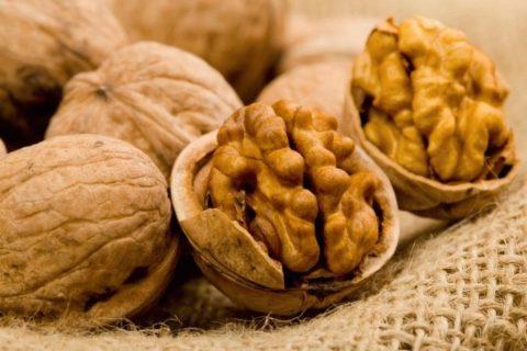 Спелый грецкий орех