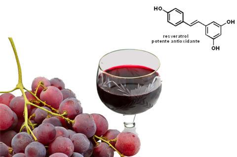 Только в красном вине есть ресвератрол