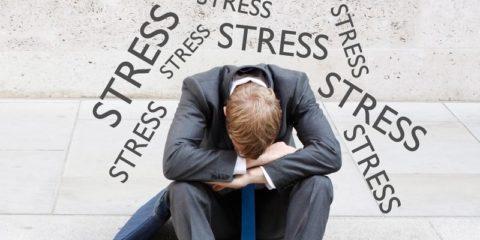 При стрессе меняется биохимический состав крови.