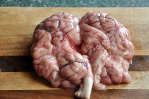 Мозги крупного рогатого скота
