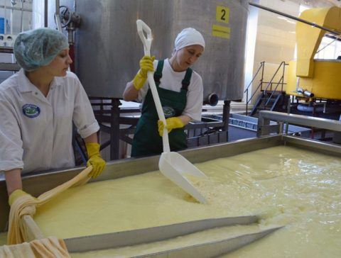 Промышленное изготовление сливочного масла