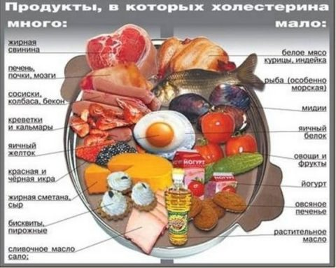 Содержание холестерина в различных продуктах