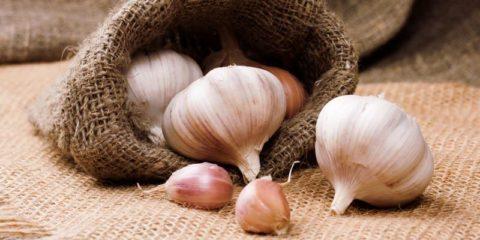Чеснок помогает очищать сосуды от холестерина