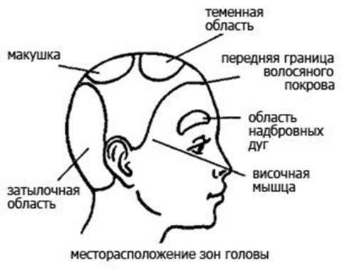 Массаж головы улучшает мозговое кровообращение