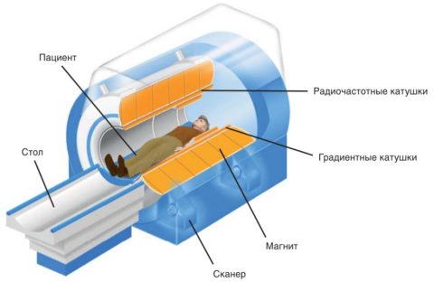 Устройство оборудования для проведения МРТ
