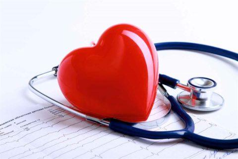 Здоровье сердечно-сосудистой системы прежде всего зависит от самого человека
