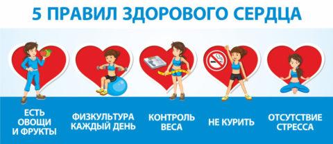 Основные правила здорового человека