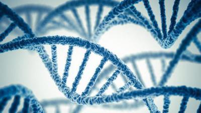 Генетическая обусловленность