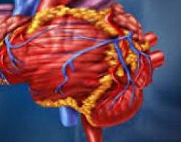 Эффективные методы лечения атеросклероза головного мозга